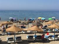 beach bar restaurant marbella - 1