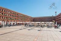 four emblematic buildings cordoba - 1
