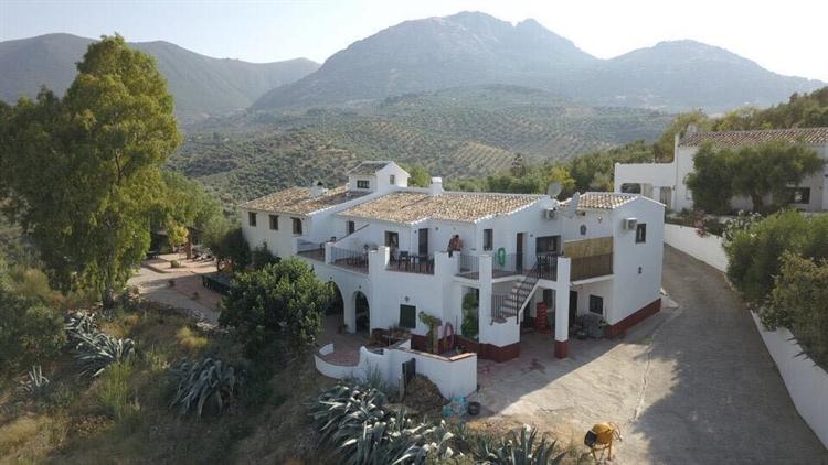 successful hotel andalucia - 8