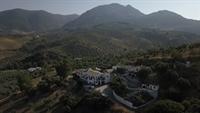 successful hotel andalucia - 2