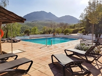 successful hotel andalucia - 1