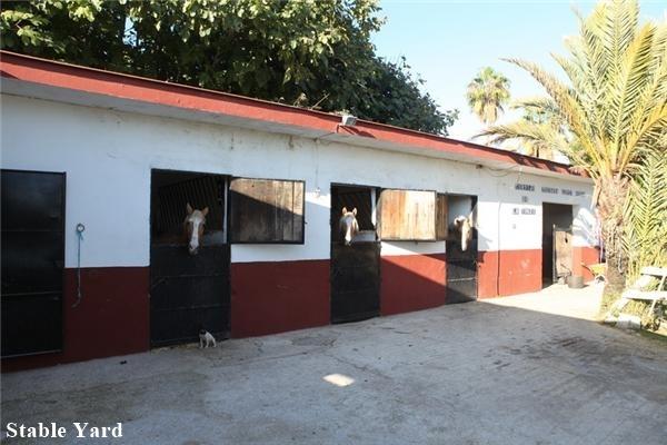 equestrian estate for sale - 5