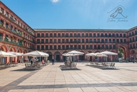 four emblematic buildings cordoba - 2
