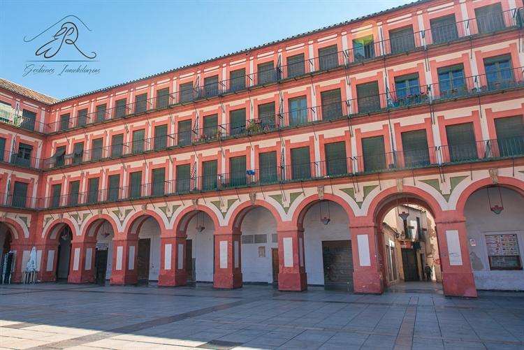four emblematic buildings cordoba - 4